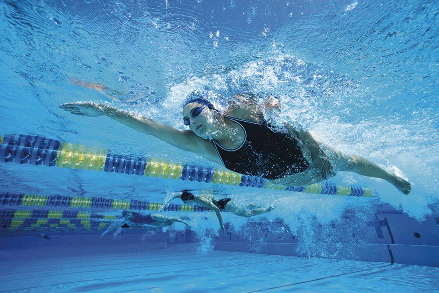 Ferrara Nuoto stagione 2019 2020